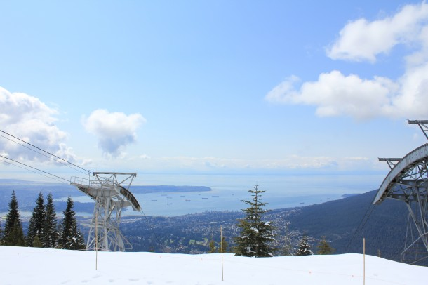 top of grouse mountain, grouse in winter