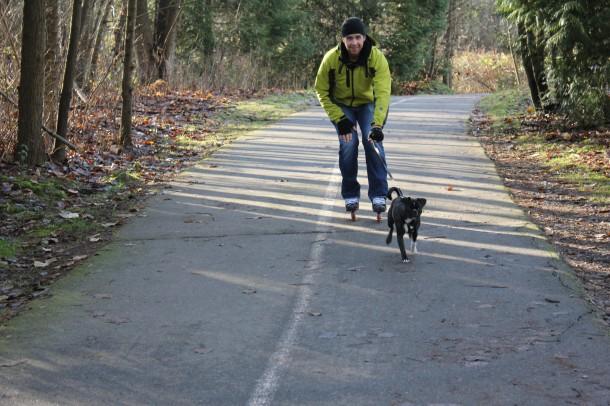 taking dog rollerblading