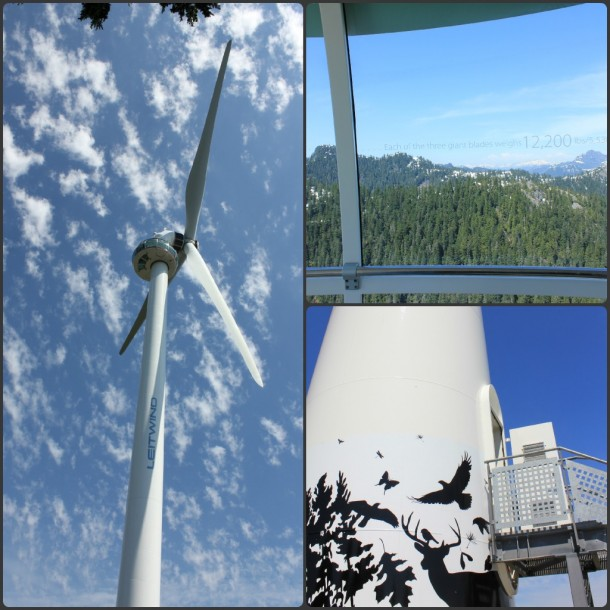 Eye of The Wind, Grouse Mountain
